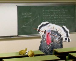 turkey-teacher1.jpg